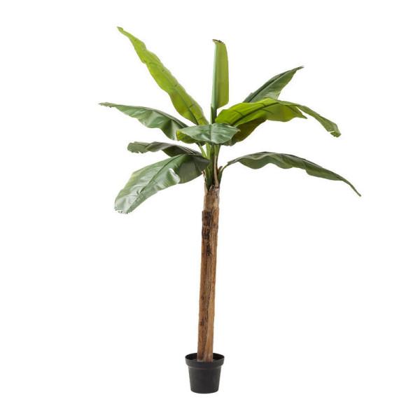Deco boom bananenboom