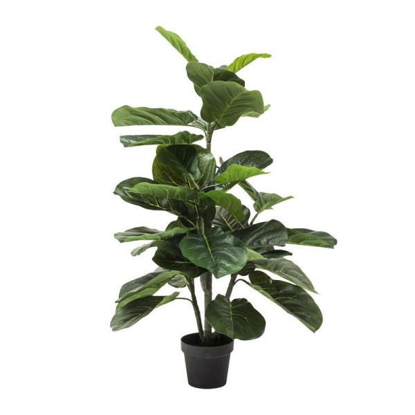 Deco plant vioolbladplant