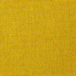 554 - Soft, Mustard Flower